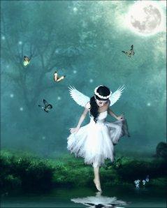 fairy3