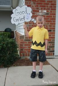 Charlie Brown, de «O Grande Livro de Perguntas e Respostas de Charlie Brown» I (Charles M. Schulz)